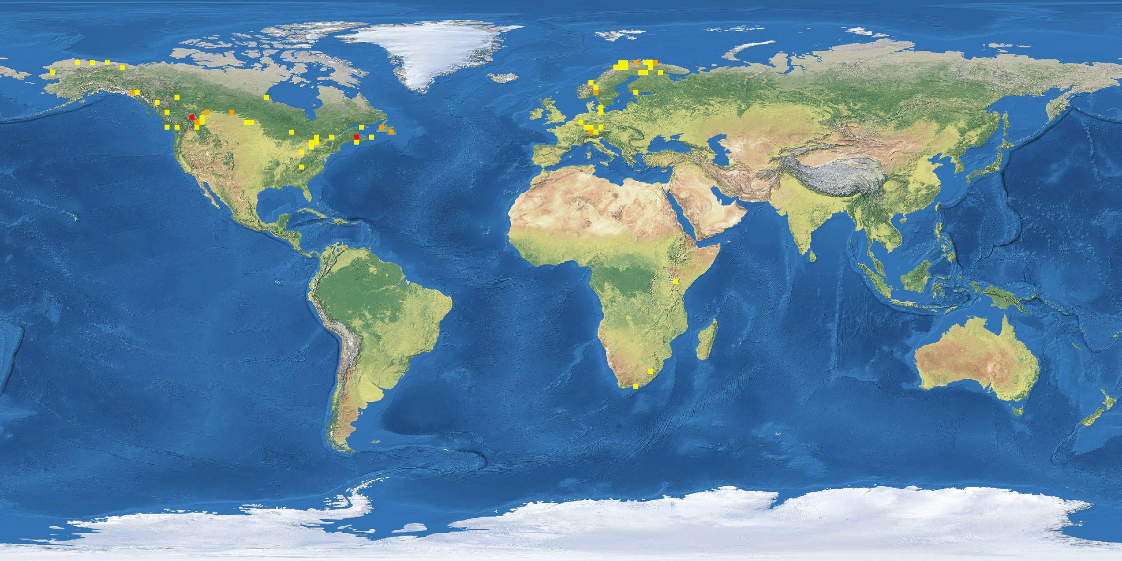 Kart med strekkoder av Allodia